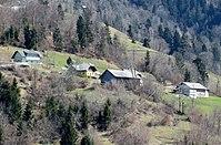 Zavrh pri Crnivcu Slovenia.jpg