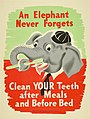 """An Elephant Never Forgets"" (15866594818).jpg"