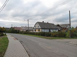 Houses by road