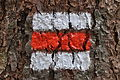 Štěpánov-nad-Svratkou--červená-značka-v-lese2014.jpg