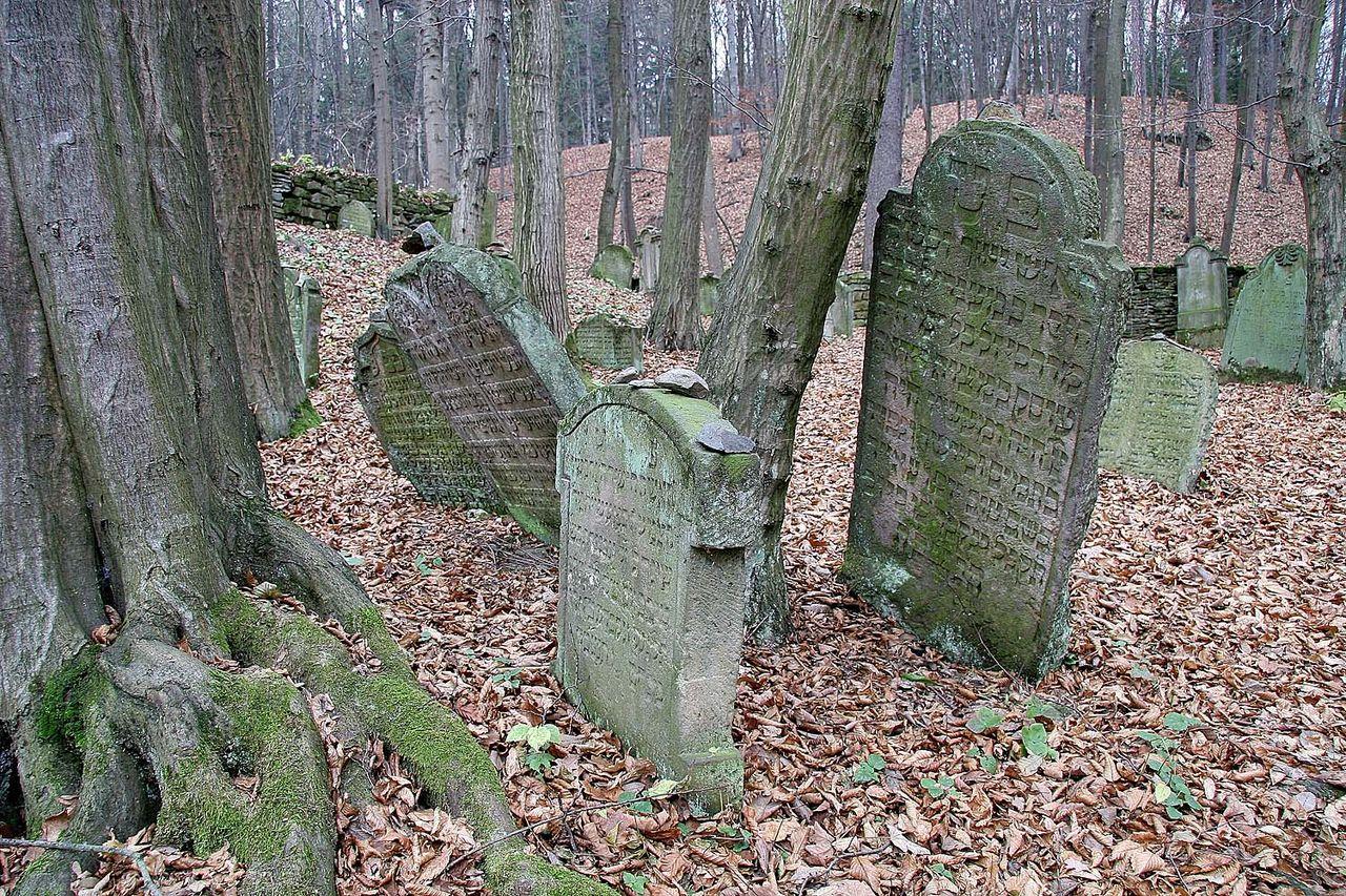 Židovský hřbitov v Podbřezí1.jpg