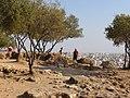 Ακρόπολις (Acropolis) 08-2008 - panoramio - adirricor (1).jpg