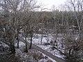 "Вид на парк ""Лески"" с Крылова, 35 - panoramio.jpg"