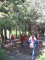 Дендрологічний парк 136.jpg