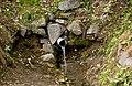 Джерело, що б'є зі скелі біля єврейського кладовища (Корець) P1160985.JPG