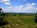 Замечательный денек, замечательная природа - panoramio.jpg