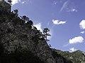 """Национални парк """"Сутјеска"""" 07.jpg"""