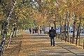 Осенний Павлодар.jpg