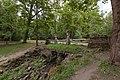 Павловск. Руинный каскад. Лето 2015.jpg