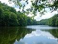Парк-пам'ятка садово-паркового мистецтва «Тростянецький». Третє озеро.jpg