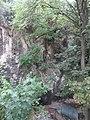 Природни споменик Миоценски спруд Ташмајдан 011.JPG
