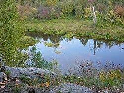 Река Серга в парке Оленьи ручьи.JPG