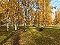 Сад Бенуа осенью2.jpg