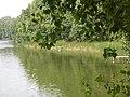 Самодельные мостики - panoramio.jpg