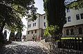 Свети Наум Охрид - зеленило, 2014.JPG