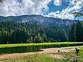 Смолянски езера, Тревисто езеро на фон се виждат Орфееви скали.jpg