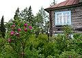 У дачи архимандрита. Соловецкие розы.jpg