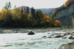 Cheremosh River - Cheremosh in Vyzhnytsia Raion