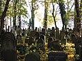 בית הקברות היהודי בקרקוב - קברים (8).jpg