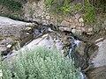 در مسير رودخانه کاظم باغ حاجيون - panoramio.jpg