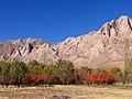 هوش - نصرآباد - panoramio - Farid Atar (1).jpg