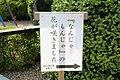 なんじゃもんじゃ の 花が咲きました (26971591301).jpg