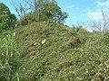 台中市東勢區慶福里沿著軟埤坑、燥坑分水嶺向西北看 - panoramio - Dan Jacobson (積丹尼).jpg
