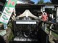 富士山の雪どけ水 (1429630537).jpg
