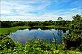 湖水2010 - panoramio.jpg