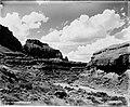 00800 Grand Canyon Havasu Canyon (7945902702).jpg