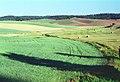 03-37-16, field - panoramio.jpg
