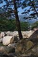 0333 - Nordkorea 2015 - Kumgang Gebirge (22544779037).jpg