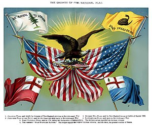 Pine Tree Flag - An American school textbook depicting the flag alongside the Gadsden Flag, the Grand Union Flag, a colonial New England flag, the Bunker Hill flag, and the Flag of the United States.