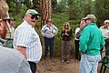 2005. Forest Pathologist Helen Maffei speaking at the Lewis Roth Dwarf Mistletoe Trail dedication. North Twin Lake, Deschutes National Forest, Oregon. (24732188727).jpg