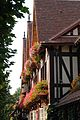 2007 windowboxes France 1424300997.jpg