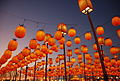 2008 Taiwan Lantern Festival is held at Tainan County.jpg