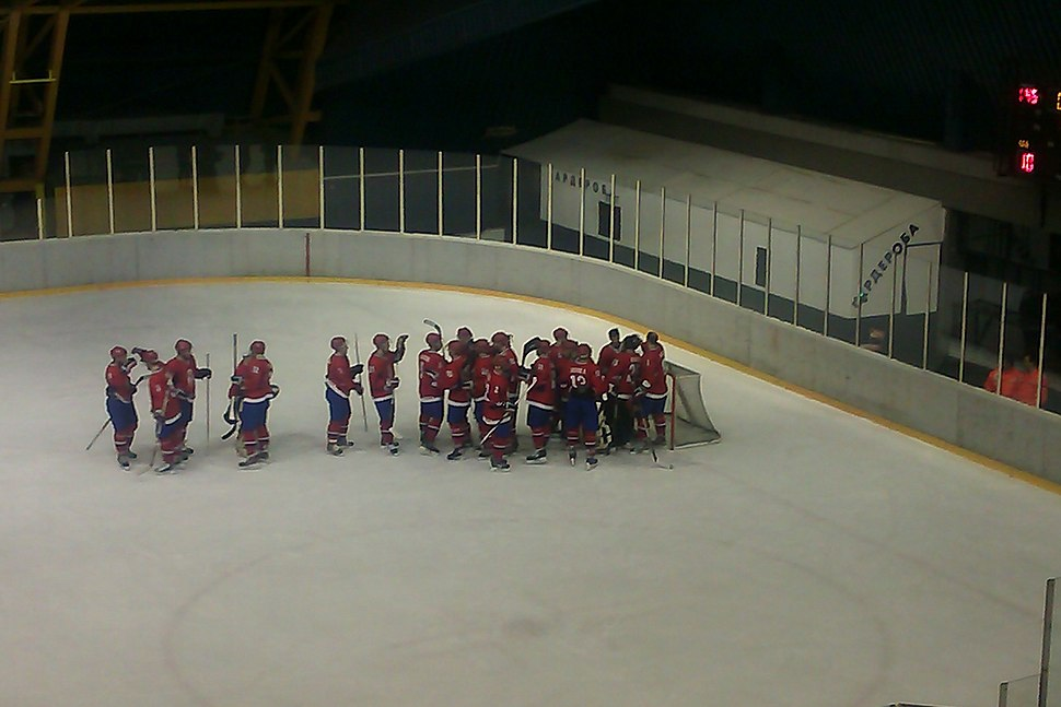 2014 IIHF World Championship Division II, Serbia national ice hockey team