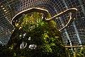 2016 Singapur, Gardens by the Bay, Las Mglisty (06).jpg