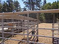 2017-07-10 Black Butte Ranch 24.jpg