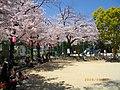 2 Chome Nakasakurazuka, Toyonaka-shi, Ōsaka-fu 561-0881, Japan - panoramio - yokoyokoi (2).jpg