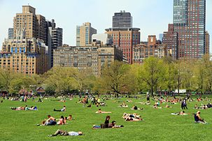 3015-Central Park-Sheep Meadow