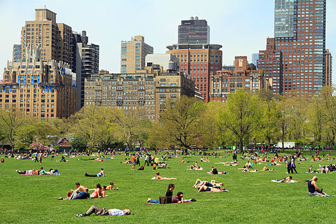 Sheep Meadow, a common place for gatherings 3015-Central Park-Sheep Meadow.JPG