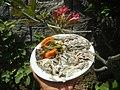 4776Cuisine food of Bulacan 60.jpg