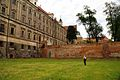 604viki Lubiąż. Foto Barbara Maliszewska.jpg