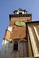 7436viki Wawel. Foto Barbara Maliszewska.jpg
