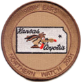 900th Expeditonary Air Refueling Squadron - ONW - Patch.png