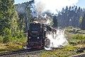 99 7245-6, Germany, Saxony-Anhalt, Drei Annen Hohne Railway station (Trainpix 158046).jpg