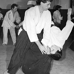 definition of aikido