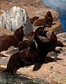 A group of sea lions. Colour half tone. Wellcome V0021302EL.jpg