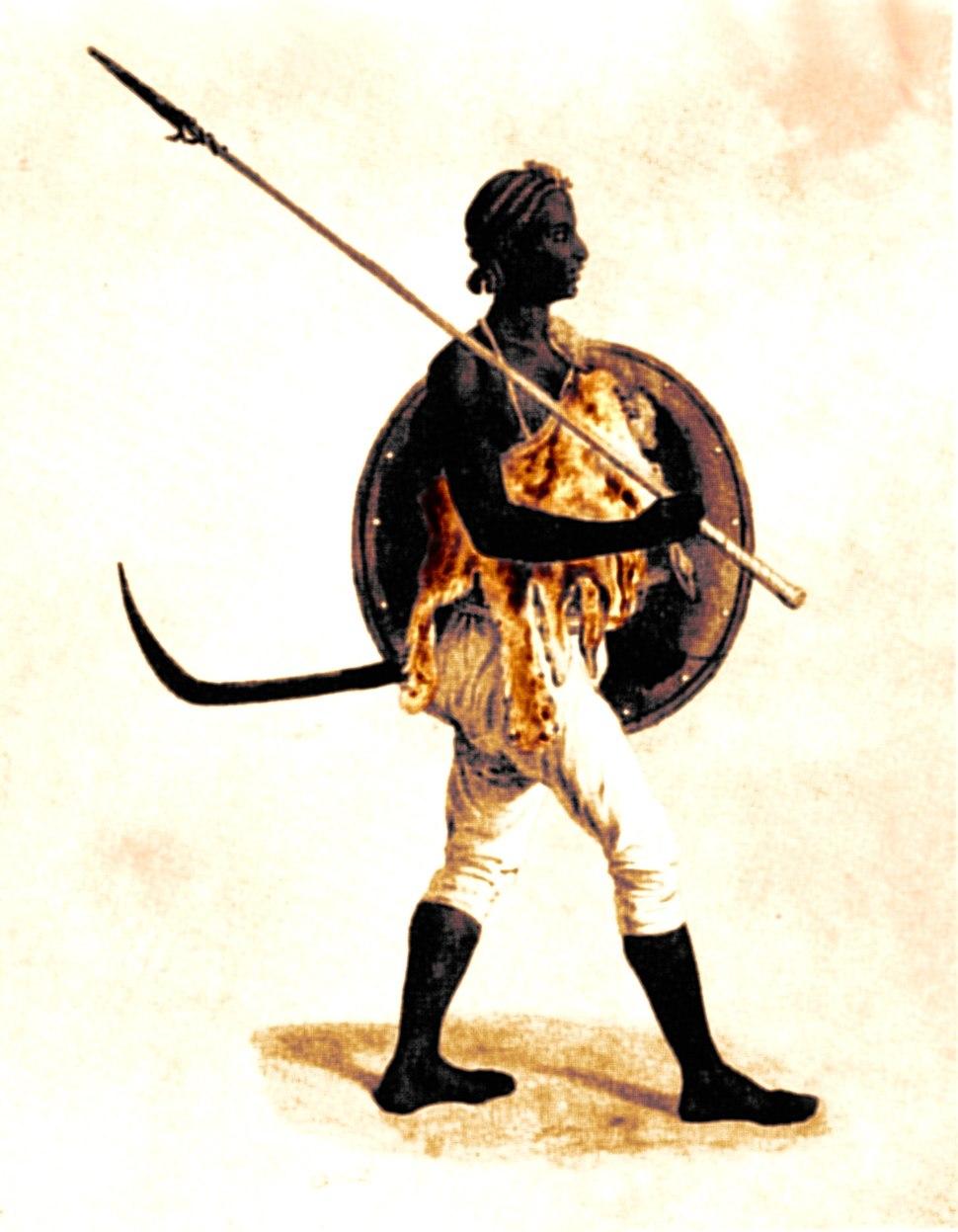 A lancer of Tigre colour
